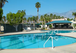 Outdoor Resort Palm Springs Pool